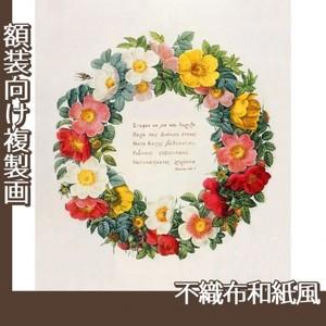 ルドゥーテ「バラ図譜の口絵」【複製画:不織布和紙風】