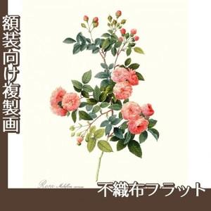 ルドゥーテ「ノイバラ」【複製画:不織布フラット100g】