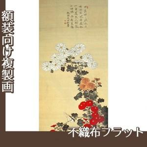 酒井抱一「菊に小禽図」【複製画:不織布フラット100g】