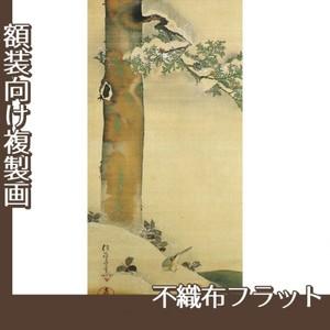 酒井抱一「雪中檜に小禽図」【複製画:不織布フラット100g】