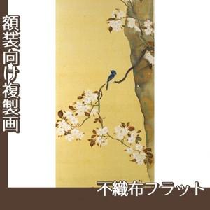 酒井抱一「桜に小禽図・柿に小禽図(右隻)」【複製画:不織布フラット100g】