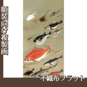 伊藤若冲「群魚図」【複製画:不織布フラット100g】