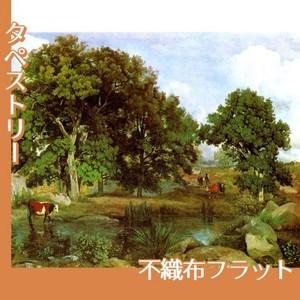 コロー「フォンテーヌブローの森の光景」【タペストリー:不織布フラット100g】