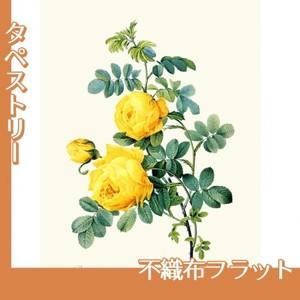 ルドゥーテ「ロサ・スルフレア」【タペストリー:不織布フラット100g】