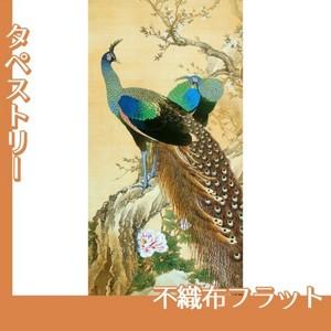 今尾景年「孔雀」【タペストリー:不織布フラット100g】