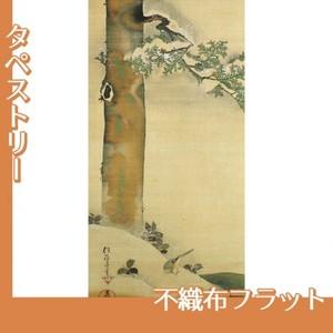 酒井抱一「雪中檜に小禽図」【タペストリー:不織布フラット100g】