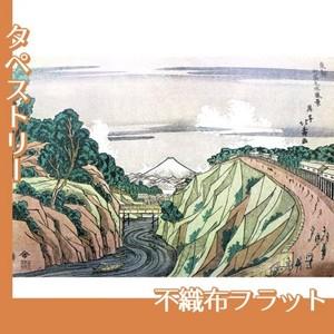 葛飾北斎「東都御茶之水風景」【タペストリー:不織布フラット100g】