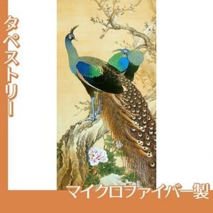 今尾景年「孔雀」【タペストリー:マイクロファイバー】
