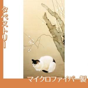 菱田春草「猫梅」【タペストリー:マイクロファイバー】