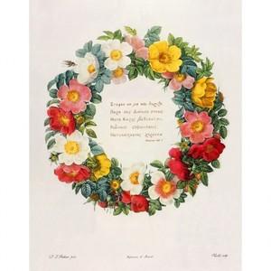 ルドゥーテ「バラ図譜の口絵」【ハンカチ・コースター・複製画】