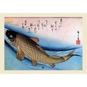 歌川広重「魚づくし 鯉」【ハンカチ・コースター・複製画】