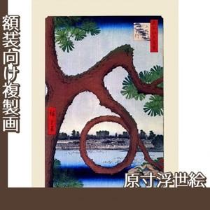 歌川広重「名所江戸百景 上野山内月のまつ」【原寸浮世絵】