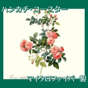 ルドゥーテ「ノイバラ」【ハンカチ・コースター】