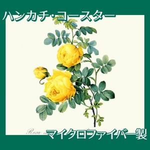 ルドゥーテ「ロサ・スルフレア」【ハンカチ・コースター】