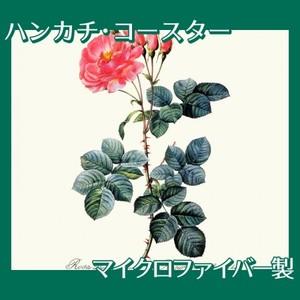 ルドゥーテ「ロサ・ダマスケナ・アウロラ」【ハンカチ・コースター】