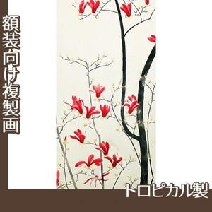 小林古径「木蓮」【複製画:トロピカル】