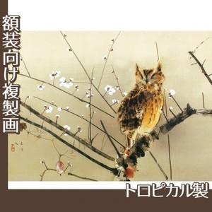 西村五雲「寒梅」【複製画:トロピカル】