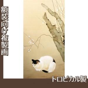 菱田春草「猫梅」【複製画:トロピカル】
