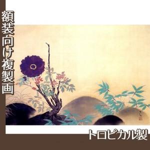 横山大観「寒牡丹」【複製画:トロピカル】