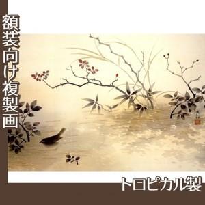 横山大観「浅春」【複製画:トロピカル】