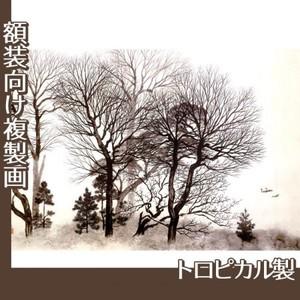 横山大観「梅花薫る」【複製画:トロピカル】