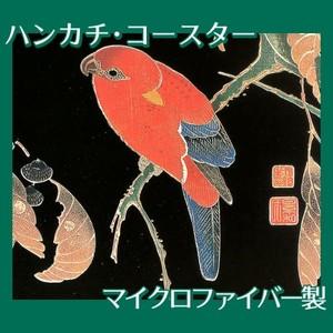 伊藤若冲「花鳥版画(六枚) 二.櫟に鸚哥図」【ハンカチ・コースター】
