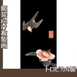 伊藤若冲「花鳥版画(六枚) 五.椿に白頭図」【複製画:トロピカル】