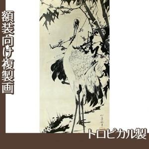 伊藤若冲「竹梅群鶴図1(双幅)」【複製画:トロピカル】
