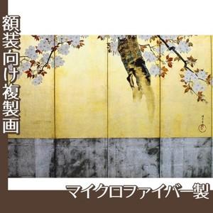 酒井抱一「桜図屏風(右隻)」【複製画:マイクロファイバー】