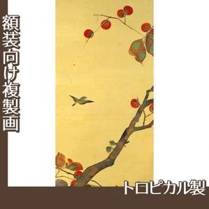 酒井抱一「桜に小禽図・柿に小禽図(左隻)」【複製画:トロピカル】