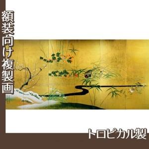 酒井抱一「四季花鳥図屏風」【複製画:トロピカル】