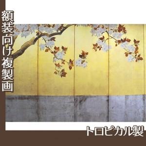 酒井抱一「桜図屏風(左隻)」【複製画:トロピカル】