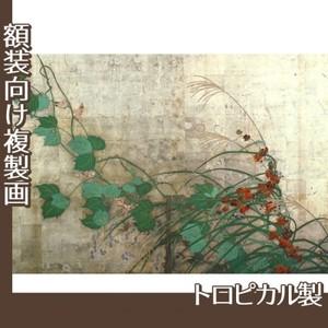 酒井抱一「夏秋草図屏風(左隻)」【複製画:トロピカル】