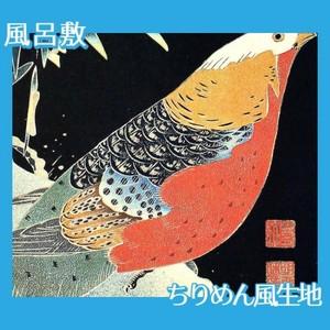 伊藤若冲「花鳥版画(六枚) 一.雪竹に錦鶏図」【風呂敷】