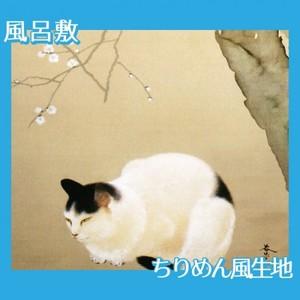 菱田春草「猫梅」【風呂敷】