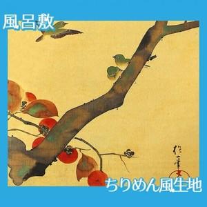 酒井抱一「桜に小禽図・柿に小禽図(左隻)」【風呂敷】