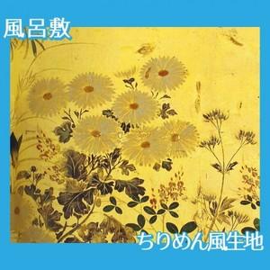酒井抱一「槙に秋草図屏風(右隻)」【風呂敷】