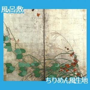 酒井抱一「夏秋草図屏風(左隻)」【風呂敷】