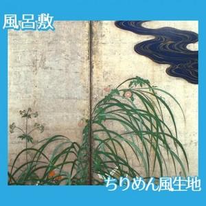 酒井抱一「夏秋草図屏風(右隻)」【風呂敷】