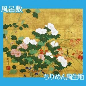 酒井抱一「秋草花卉図」【風呂敷】