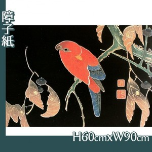 伊藤若冲「花鳥版画(六枚) 二.櫟に鸚哥図」【障子紙】