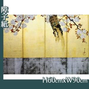 酒井抱一「桜図屏風(右隻)」【障子紙】