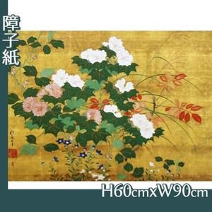酒井抱一「秋草花卉図」【障子紙】