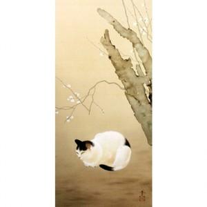 菱田春草「猫梅」【タペストリー】