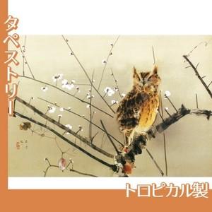西村五雲「寒梅」【タペストリー:トロピカル】