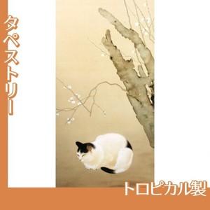 菱田春草「猫梅」【タペストリー:トロピカル】