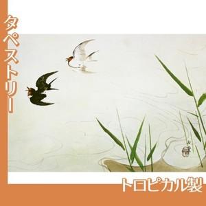 川合玉堂「飛燕(水四題)」【タペストリー:トロピカル】