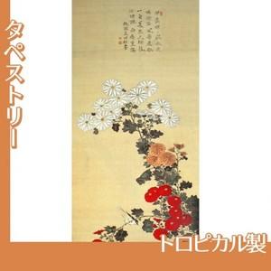 酒井抱一「菊に小禽図」【タペストリー:トロピカル】