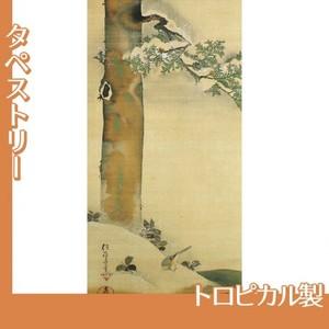 酒井抱一「雪中檜に小禽図」【タペストリー:トロピカル】