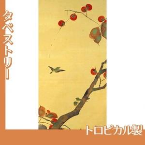 酒井抱一「桜に小禽図・柿に小禽図(左隻)」【タペストリー:トロピカル】